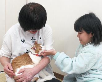 猫とふれあう参加者