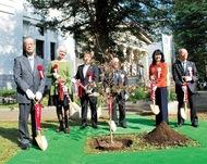 ハナミズキを記念植樹