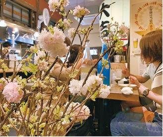 奈良の八重桜が