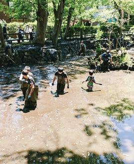 大人も子供も楽しんでいたかいぼり体験(提供写真)