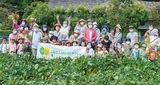 農作業、楽しむ場へ再生
