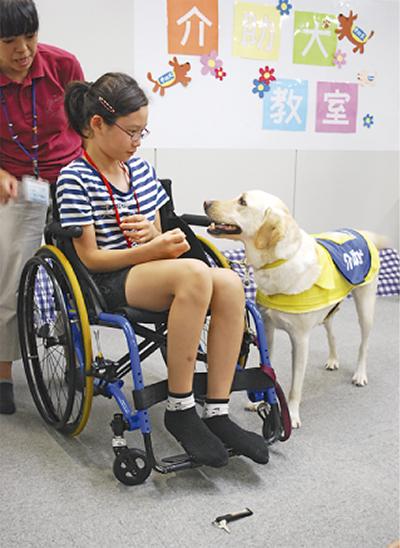 介助犬の仕事を紹介