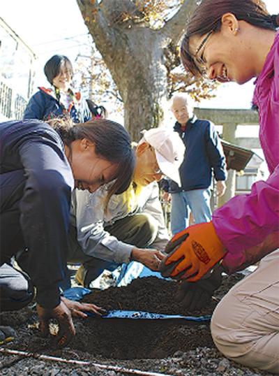 公開治療で樹勢回復確認