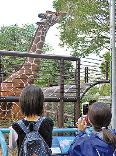 恒例イベントで動物園へ