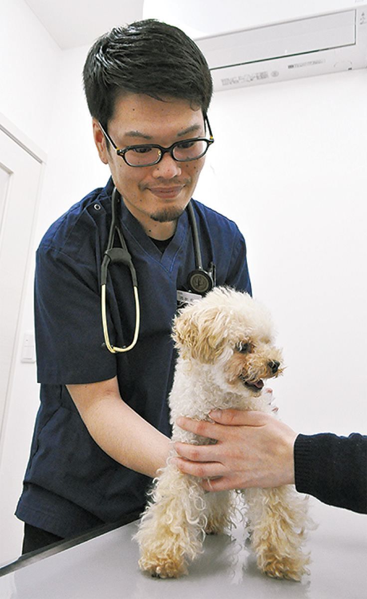 狂犬病、フィラリア予防を