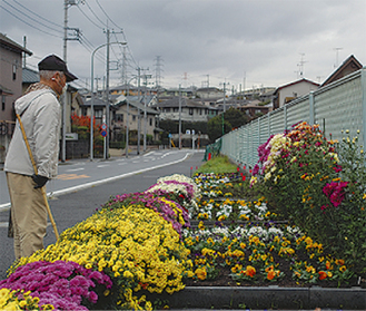 花に見入る人の姿も(11月29日撮影)