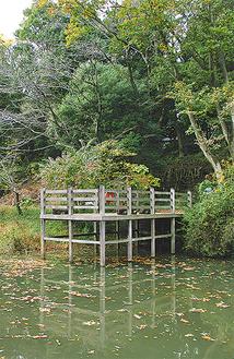 生態園内に広がる雑木林と御手洗池