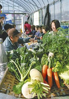 採れたての冬野菜を食べる参加者