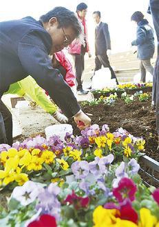 花の苗を植える参加者