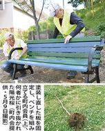 「広場に陽光桜を再び」