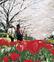 江川でお花見会