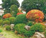 四季折々の花が咲く庭園
