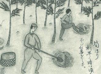 中川の竹の子