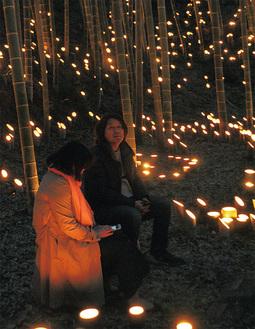 幻想的な雰囲気の竹林