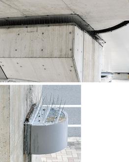 橋脚上部の隙間にバードネット(上写真)を、街灯の上には剣山を設置