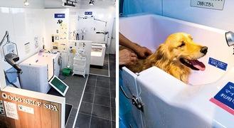 今年5月にオープンした明るく綺麗な店内。動物病院でも使用されるお風呂でワンちゃんも気持ちが良さそう
