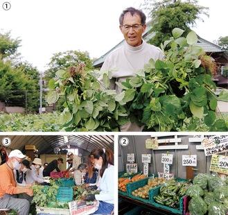 【1】枝豆の収穫をする石川さん【2】朝どれの野菜が並ぶ直売所【3】ボランティアメンバー