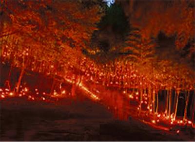 竹灯籠で癒しを