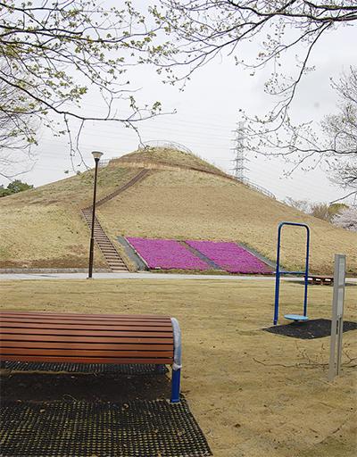 築山を再整備