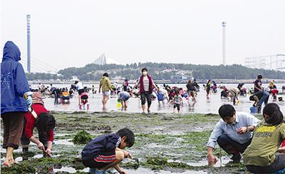 海の公園で潮干狩り