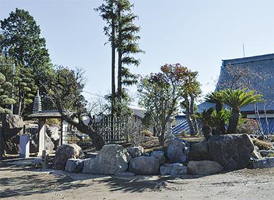 心落ち着く浄土式庭園が完成