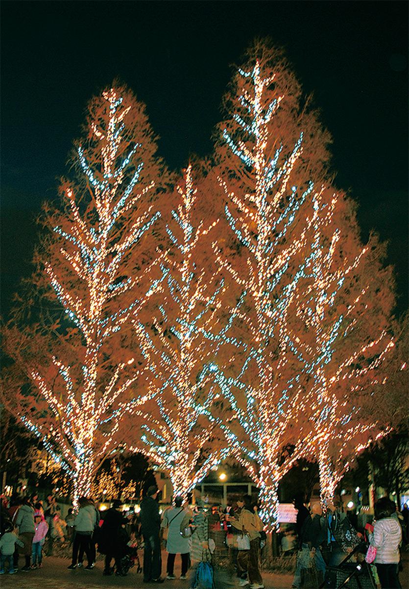 セン南がクリスマス色に