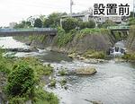 今年4月に魚道が新設された中堀川合流点付近