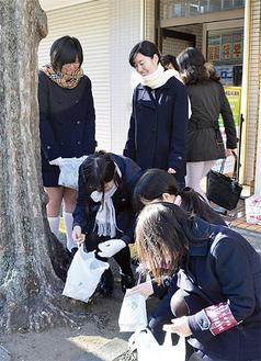 木に隠れたごみを拾う生徒たち