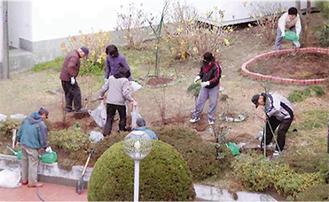 財団から配布された苗木を植樹している様子