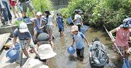 帷子川で水遊び