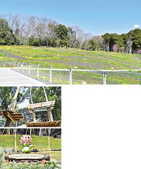 横浜の花で彩る大花壇(上)、有料・予約制のアスレチックコース(中)、シンボルキャラクター・ガーデンベアが迎えるウェルカムガーデン=すべて里山ガーデン