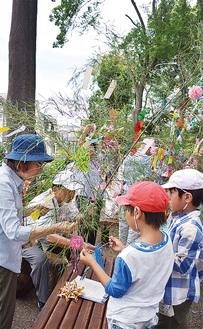 笹を飾りつける児童たち