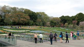 春の開催時の大花壇