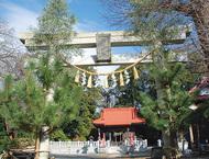 新春は地元神社で