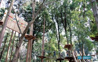 緑化フェア開催時に設置されていたアスレチック施設、現在は撤去されている