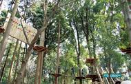 公民連携し魅力ある公園へ