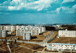 入居が始まった1968年の左近山団地(西川茂さん提供)