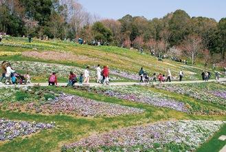 昨年春公開時の大花壇