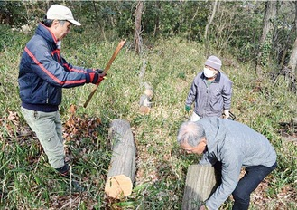 伐採樹林を整備するメンバー