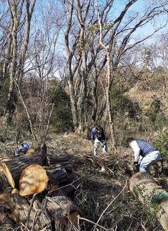 立ち枯れの木の伐採や、落枝を拾うメンバーたち(水村建設提供)
