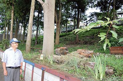 地域力で森再生