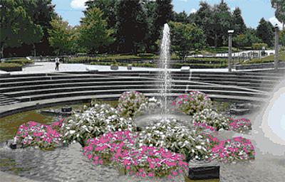 夏の「噴水苑づくり」