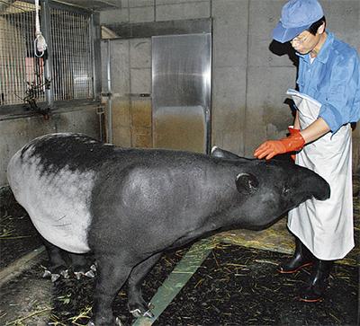 研究施設・動物 公開へ