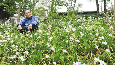 住民の手で四季の花