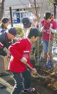 児童と地域住民が協力して植樹