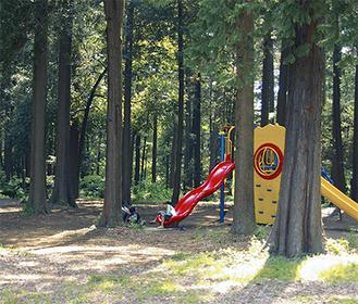 瀬谷区のプレイパークでは南台こどものもり公園内の自然を利用し、子どもの遊び場を提供する