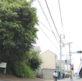 住宅街や道路に囲まれて残る鷹見塚