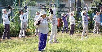 多い時には約50人が朝の体操を楽しむ