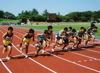 うだるような暑さの下、選手たちは全力で駆け抜けた