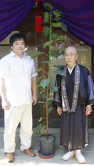 インド菩提樹を挟んで植田社長(左)と栁澤住職